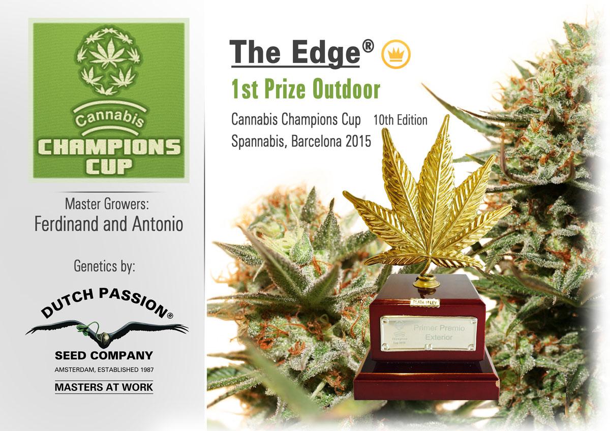 cannabis cup award dutch passion