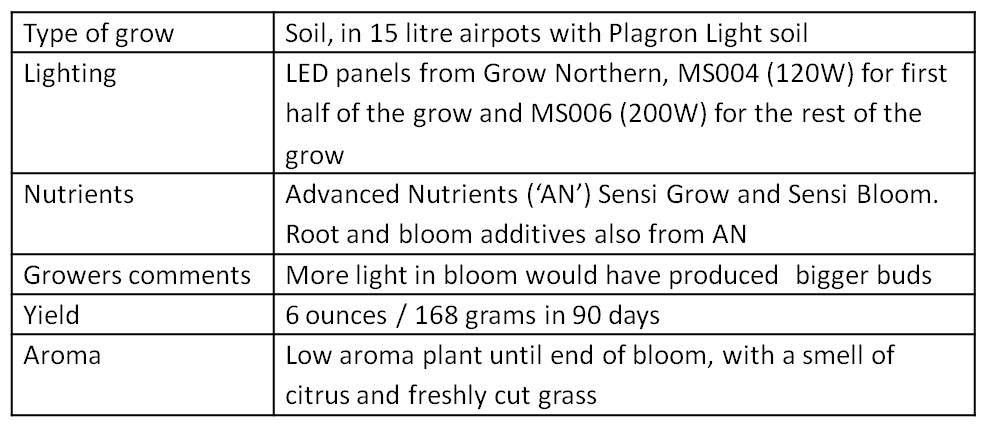 grow summary table