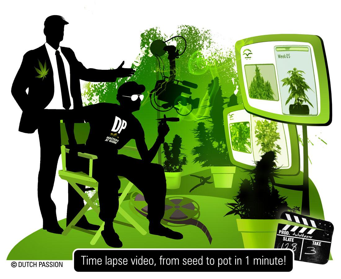 artwork for time-lapse blog